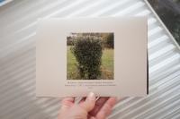 Photographies - Projet IME Plan Cousut