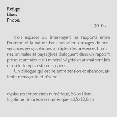 refugephobiabluestext
